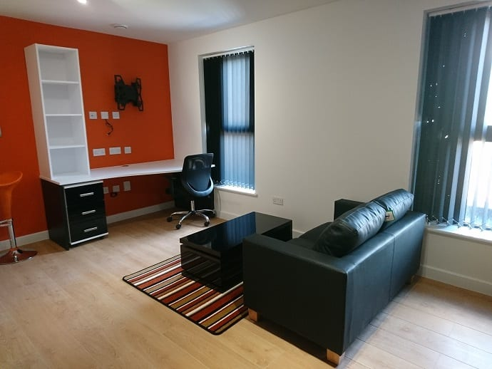 DELUXE STUDIO LIVING ARE AND STUDY AREA